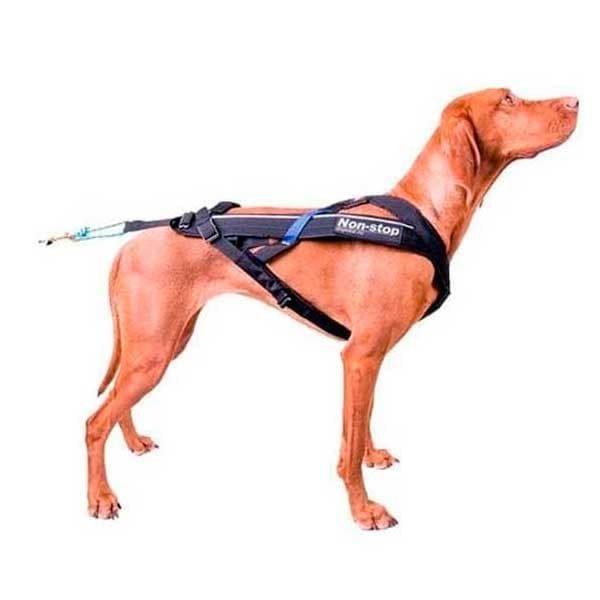 arnes de canicross para perros