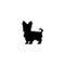 arnes-perro-yorkshire